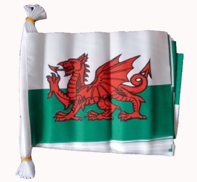 WALES BUNTING - 9 METRES 30 FLAGS